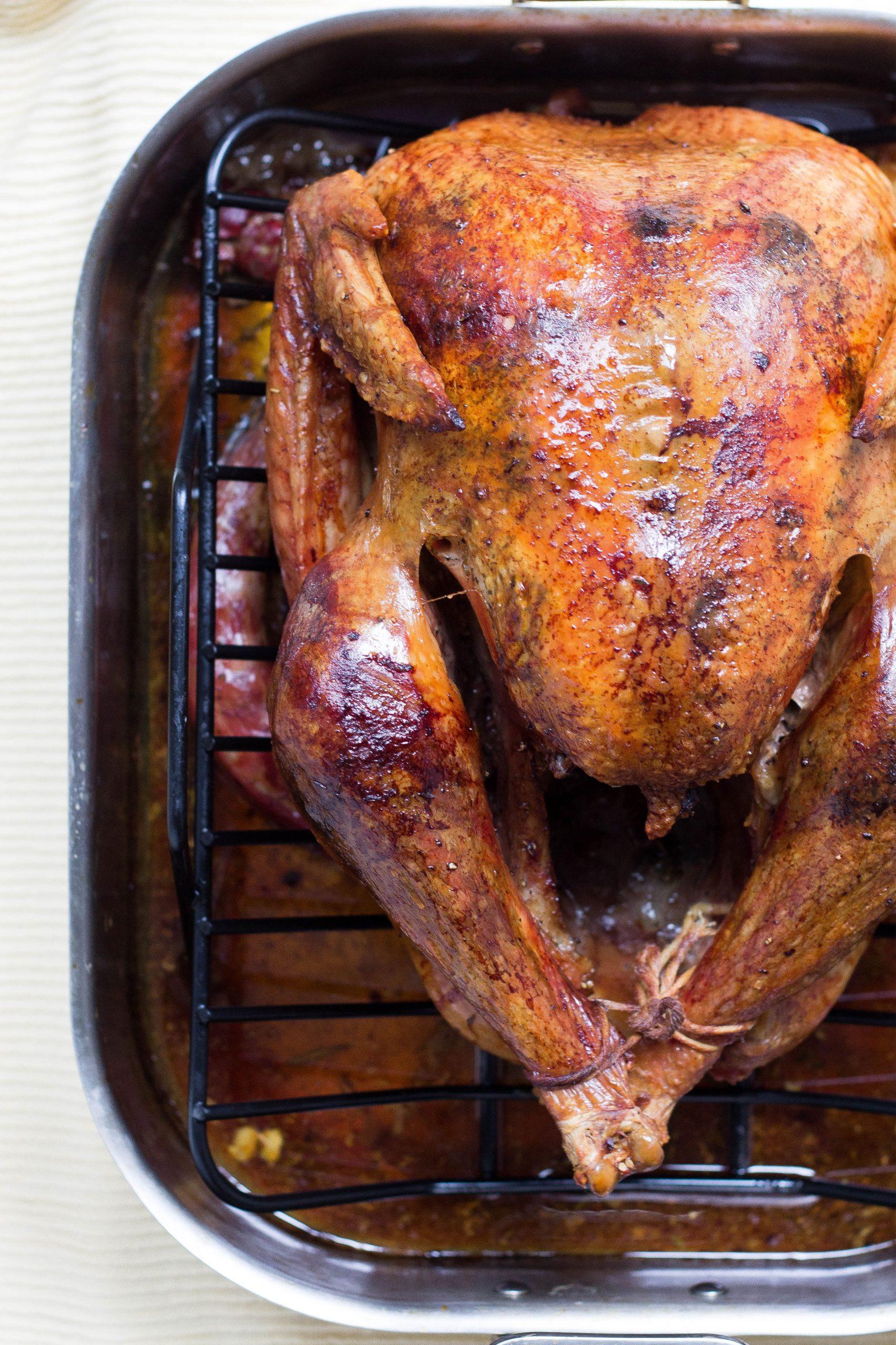 Enjoy turkey on Thanksgiving!